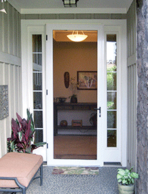 Stainless steel security screen door installed in this front entry